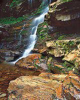 Ganoga Falls in early summer; Ricketts Glen State Park, PA