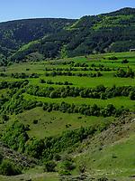Kleiner Kaukasus und Kulturlandschaft bei Separa, Samzche-Dschawacheti, Georgien, Europa<br /> small caucasus and cultivated landscape near Separa, Samzche-Dschawacheti,  Georgia, Europe