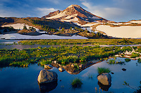 South Sister from Chambers Lakes<br /> Three Sisters Wilderness<br /> Deschutes National Forest<br /> Cascade Range,  Oregon