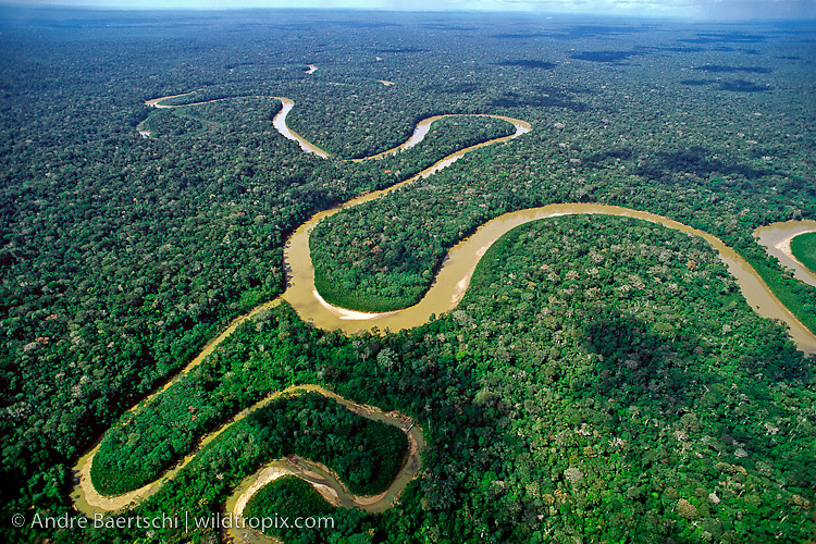 Rio Pinquen and tributary meandering through lowland tropical rainforest, Manu National Park, Madre de Dios, Peru.