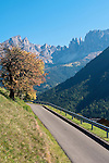 Italy, South Tyrol, Alto Adige, Dolomites, near San Cipriano: autumn scenery with Catinaccio and Torri del Vajolet mountains | Italien, Suedtirol, Dolomiten, bei St. Zyprian: Herbstlandschaft mit Rosengarten und Vajolettuerme