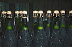 Sparkling wine waits for disgorging