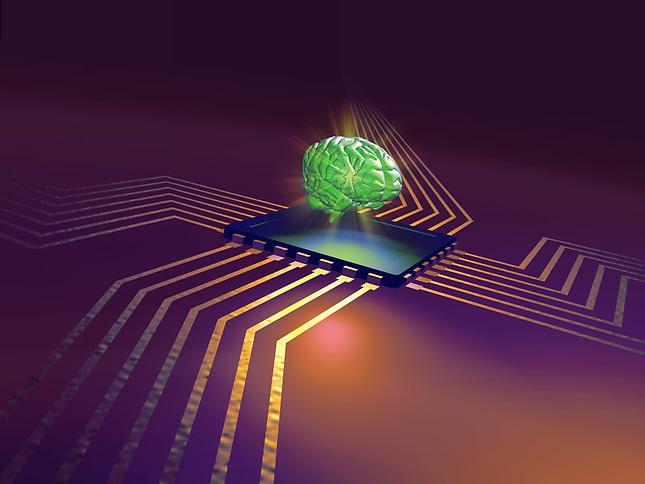 Human brain on circuit board