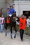 February 21, 2015: Hero of Humor with Antico Murgia up in the Risen Star Stakes at the New Orleans Fairgrounds Risen Star Stakes Day. Steve Dalmado/ESW/CSM