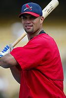 Albert Pujols of the St. Louis Cardinals during a 2003 season MLB game at Dodger Stadium in Los Angeles, California. (Larry Goren/Four Seam Images)