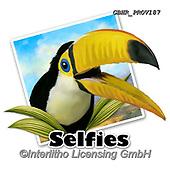 Howard, SELFIES, paintings+++++selfie Toucan,GBHRPROV187,#Selfies#, EVERYDAY