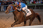 HALLANDALE BEACH, FL - MARCH 04: #2 Gunnevera with Javier Castellano up is all alone at the wire in the Fountain of Youth Stakes (G2) Gulfstream Park. (Photo by Arron Haggart/Eclipse Sportswire/Getty Images)