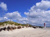 Düne beim Leuchtturm, Insel Helgoland, Schleswig-Holstein, Deutschland, Europa<br /> dune near lighthouse, Helgoland island, district Pinneberg, Schleswig-Holstein, Germany, Europe