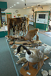 visitor center Seney NWR