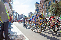 peloton with Dries Devenyns (BEL/Quick Step Floors) on the local laps in 'De Panne'<br /> <br /> 3 Days of De Panne 2017<br /> Morning stage 3: De Panne-De Panne (111,5km)