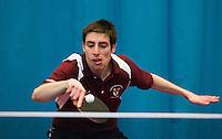 Table Tennis Portfolio