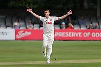 Cricket 2021-09