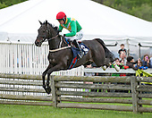 3rd Radnor Hunt Cup - Straight To It