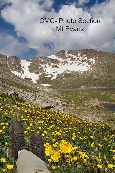 Hiker looking at summit of Mount Evans, Colorado. Wildlife  photo tours to Mt Evans.