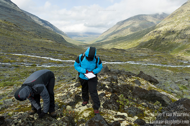 Two students conduct fieldwork to measure the diameter of lichen to determine the age of the moraine. The measurements are used in cliamte changes studies.