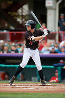 Erie SeaWolves left fielder Chad Sedio (14) at bat during a game against the New Hampshire Fisher Cats on June 20, 2018 at UPMC Park in Erie, Pennsylvania.  New Hampshire defeated Erie 10-9.  (Mike Janes/Four Seam Images)