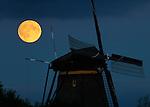 Nederland, Kinderdijk 27-09-2015, Full Moon rises over Unesco World Heritage site the Kinderdijk windmills. <br /> © foto Michael Kooren 2015.