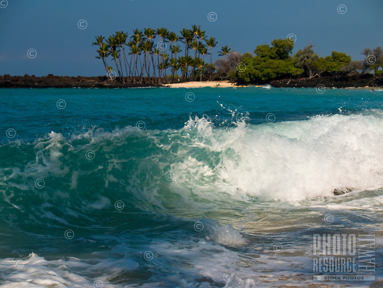 A shoreline wave breaks with palm trees in the distance, Kona, Big Island.