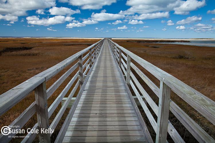 The Bass Hole boardwalk in Yarmouth, Cape Cod, MA, USA
