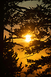 What a beautiful sunrise in Yellowstone.