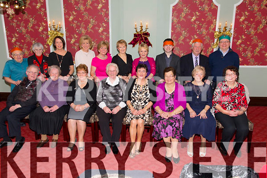 Our Lady and St. Brendan's Church Choir Christmas Party at the Imperial Hotel on Saturday.  Front l-r P.J. Ryan, Patrice Clifford, Joan Doody, Carmel Downing, Kay Walsh, Colette Quinn, Breda Carey, Ann O'Keeffe.  Back l-r Hawley O'Connor, Mary Ryan, Elizabeth O'Halloran, Mairead Healy, Ann Lacy, Eilish Hayes, Terrie Griffin, Enda Sugrue, Evan Woods, Ciaran Doyle