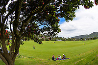 Action from the Premier T20 Cup Wellington men's twenty20 cricket match between Onslow ad Victoria University at Nairnville Park in Wellington, New Zealand on Saturday, 9 January 2021. Photo: Dave Lintott / lintottphoto.co.nz