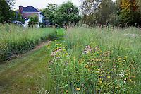 Wide mowed path through flowering meadow prairie garden, Willenberg garden