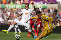Pictured L-R: Gylfi Sigurdsson of Swansea gets in the way of a shot by West Brom goalkeeper Ben Foster. Saturday 30 August 2014<br /> Re: Premier League, Swansea City FC v West Bromwich Albion at the Liberty Stadium, south Wales, UK
