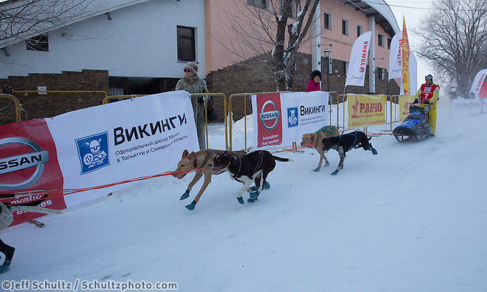On the first day of the Volga Quest Sled Dog Race.  Russia Sunday 26 January 2014