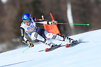 18th February 2021; Cortina d'Ampezzo, Italy;  FIS Alpine World Ski Championships 2021 Cortina  Women's Giant Slalom,  Petra Vlhova (SVK)