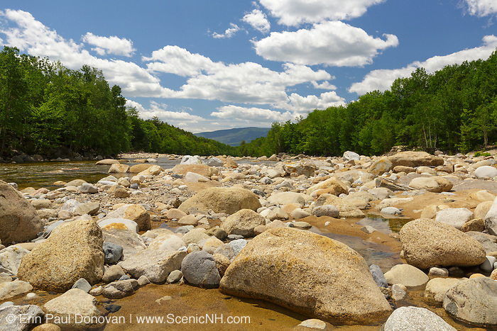 Looking down the East Branch of the Pemigewasset River in Lincoln, New Hampshire USA during the spring months