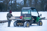 26-1-2021 Yvonne Genver feeds in lamb ewes in the snow at Croft Farm, Uffington near Stamford, Lincolnshire <br /> ©Tim Scrivener Photographer 07850 303986<br />      ....Covering Agriculture In The UK....