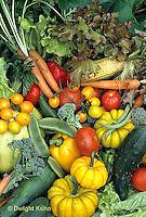 HS52-007b  Variety of harvested vegetables - squash, cucumber, tomato, corn, carrot, tomato, lettuce, broccoli, bean