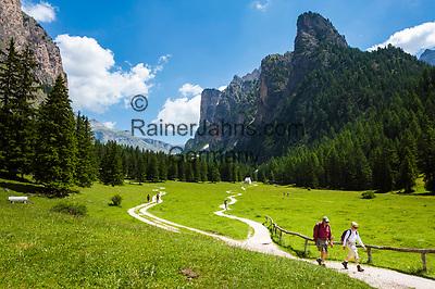 Italy, South Tyrol (Trentino - Alto Adige), Dolomites, near Selva di Val Gardena: Valley Langental (Vallunga) in Puez-Geisler Nature Park, a popular hiking area in summer, Chedul mountains (right) | Italien, Suedtirol (Trentino - Alto Adige), Dolomiten, bei Wolkenstein in Groeden: das Langental (Vallunga) im Naturpark Puez-Geisler, ein Wanderparadies im Sommer, rechts die Chedul-Berge