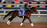 October 28, 2019 : Breeders' Cup Juvenile  entrant Wrecking Crew, trained by Peter Miller, exercises in preparation for the Breeders' Cup World Championships at Santa Anita Park in Arcadia, California on October 28, 2019. Scott Serio/Eclipse Sportswire/Breeders' Cup/CSM
