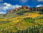 Cimarron Ridge, Uncompahgre National Forest, Colorado