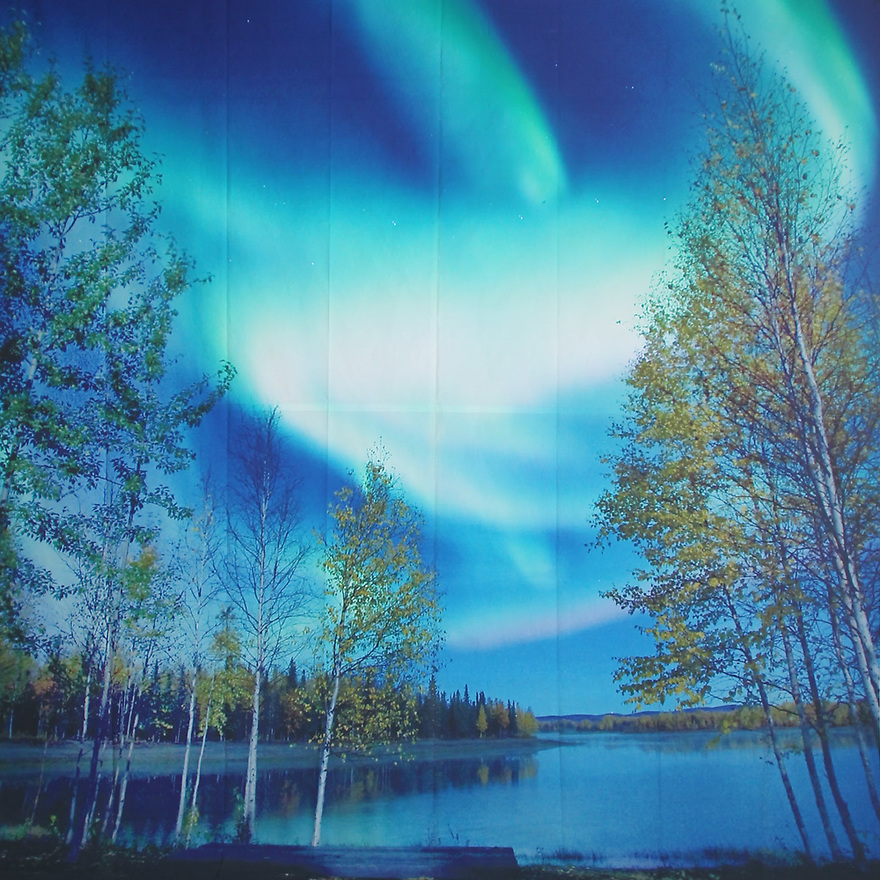 Backdrop featuring Northern Lights in the sky, wilderness, trees, and a lake water scene at twilight