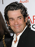 Alan Rosenberg at The 2009 AFI Fest Screening of The Road held at The Grauman's Chinese Theatre in Hollywood, California on November 04,2009                                                                   Copyright 2009 DVS / RockinExposures