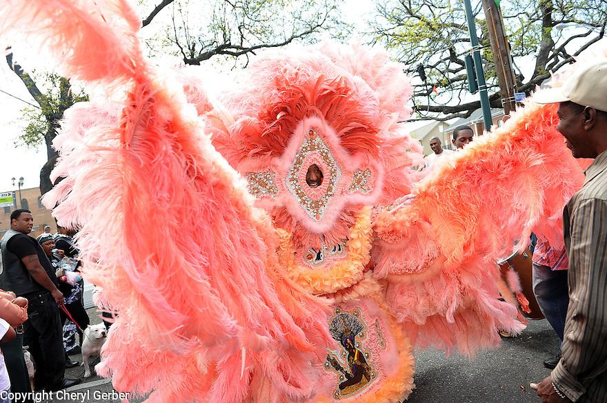 Mardi Gras Indians on Super Sunday, Uptown at Washington and LaSalle.