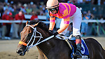 Bern Identity (no. 3), ridden by Rosie Napravnik and trained by Kelly Breen, wins the 98th running of the grade 2 Sanford Stakes for two year olds on July 22, 2012 at Saratoga Race Track in Saratoga Springs, New York.  (Bob Mayberger/Eclipse Sportswire)