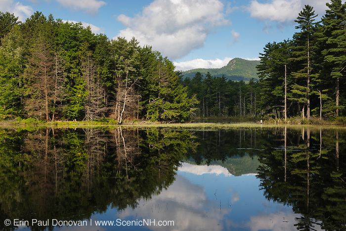 Red Eagle Pond in Albany, New Hampshire USA during the summer months.