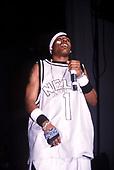 Nelly: Live 2001<br /> Photo Credit: Eddie Malluk/AtlasIcons.com