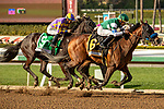 ARCADIA, CA  MARCH 7: #6 Combatant, ridden by Joel Rosario, passes #5 Midcourt, ridden by Victor Espinoza, and #1 Multiplier, ridden by Tyler Gaffalione, in the stretch of the Santa Anita Handicap (Grade l) on March 7, 2020, at Santa Anita Park in Arcadia, CA. (Photo by Casey Phillips/Eclipse Sportswire/CSM