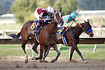 September 20, 2014:  #8 Untapable, Rosie Napravnik up, wins the Grade I Cotillion Stakes at Parx Racing in Bensalem, PA. Trainer is Steve Asmussen. Owner is Winchell Thoroughbreds. Joan Fairman Kanes/ESW/CSM