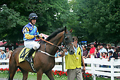 Steeplechase Times images