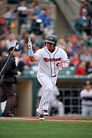 Rochester Red Wings Willians Astudillo (48) flips his bat during an International League game against the Charlotte Knights on June 16, 2019 at Frontier Field in Rochester, New York.  Rochester defeated Charlotte 3-2 in the second game of a doubleheader.  (Mike Janes/Four Seam Images)