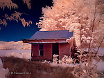 Abandoned Home near Woodbury, Tennessee (Infrared) © 2016 James D Peterson.  The residents are long gone, but their former home struggles to hang on to remnants of their spirits.