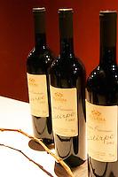 Filgueira Vinedos y Bodega wines: Super Premium Estirpe 2002, Canelones Montevideo, Uruguay, South America Uruguay wine production institute Instituto Nacional de Vitivinicultura INAVI