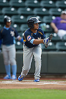 Charcer Burks (24) of the Myrtle Beach Pelicans squares to bunt against the Winston-Salem Dash at BB&T Ballpark on May 2, 2016 in Winston-Salem, North Carolina.  The Pelicans defeated the Dash 3-2 in 11 innings.  (Brian Westerholt/Four Seam Images)