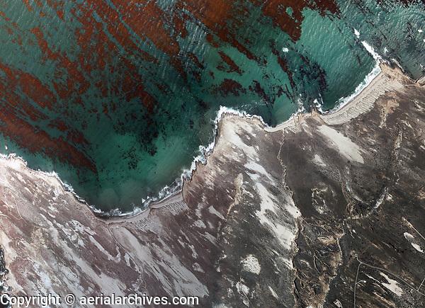 aerial photograph kelp at Catalina Island, Los Angeles County, California